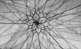 Drawing Black Lines...