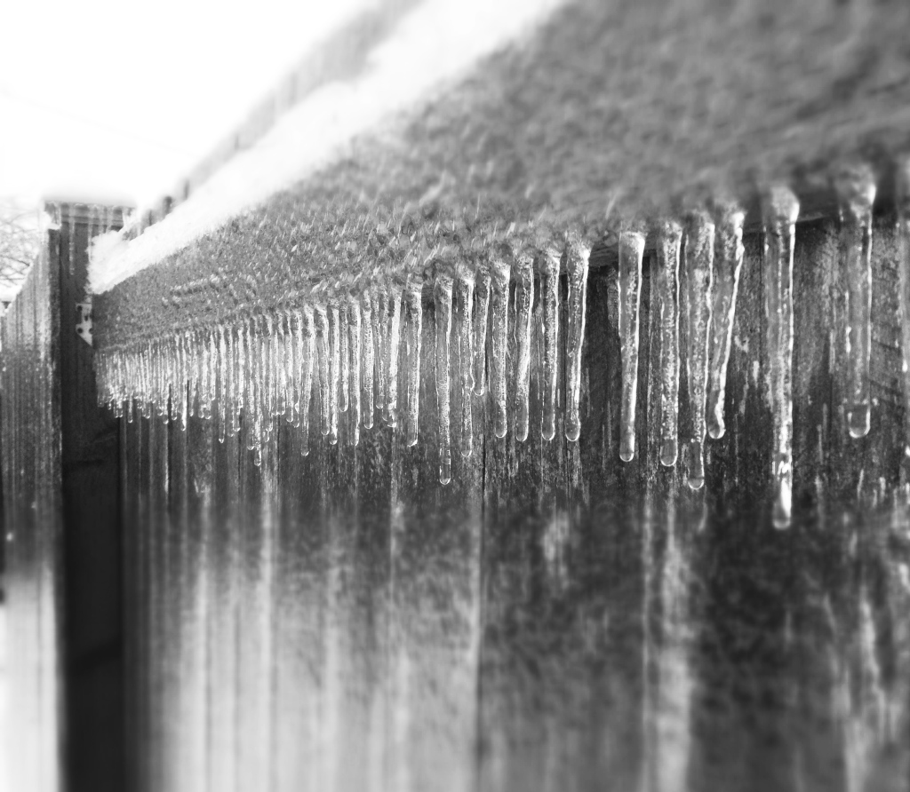 A fabulously frozen fence...