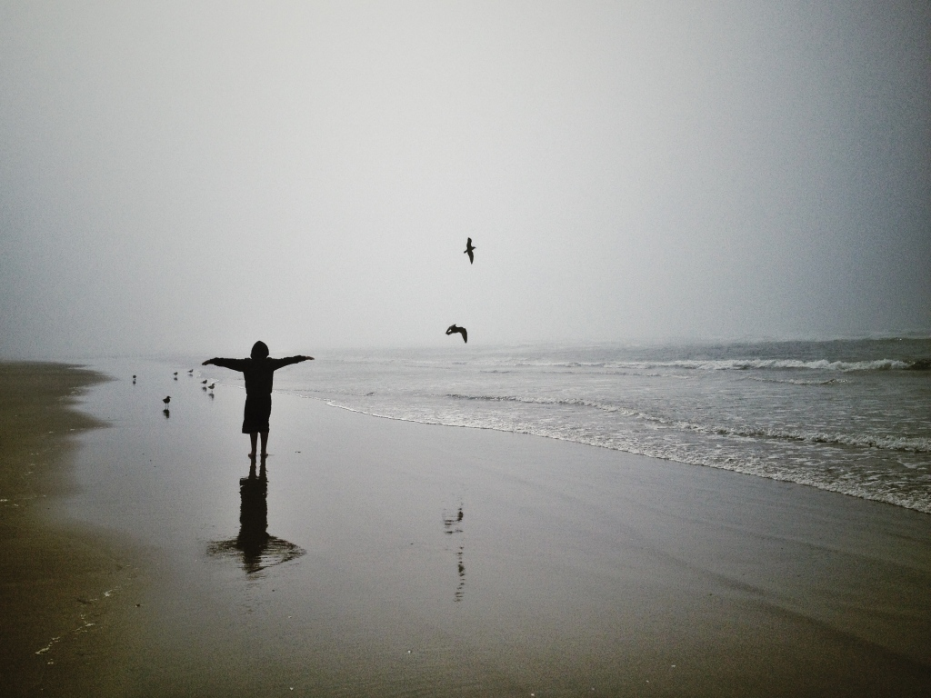 Free As A Bird...by Jaklyn Larsen