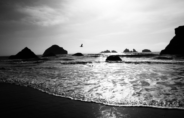 Face Rock in Bandon, Oregon. Photo by Jaklyn Larsen